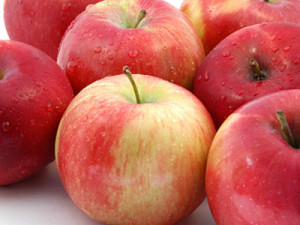 apples-to-apples-pictures-3